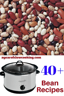 over 40 family tested crockpot slow cooker recipes from ayearofslowcooking.com  There are vegetarian, vegan, and recipes for all types of meat listed here. Great resource to save and remember!