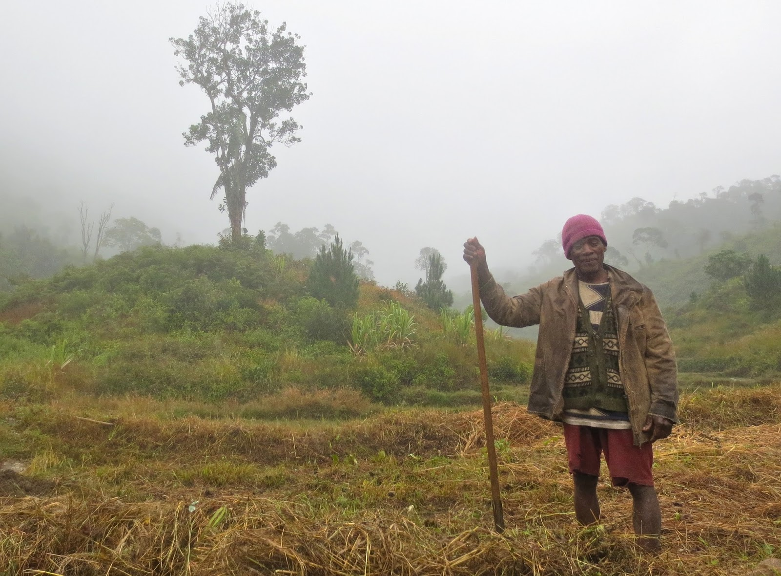 Extrêmement eScienceCommons: In Madagascar, a health crisis of people and  AG02