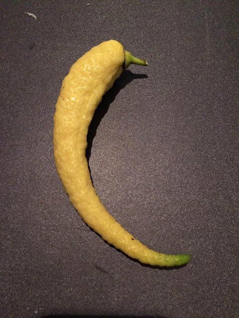 Oddly Shaped Fruits And Vegetables