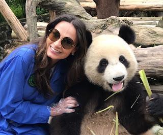 Urso Panda, Urso Panda na China, onde ver urso panda,