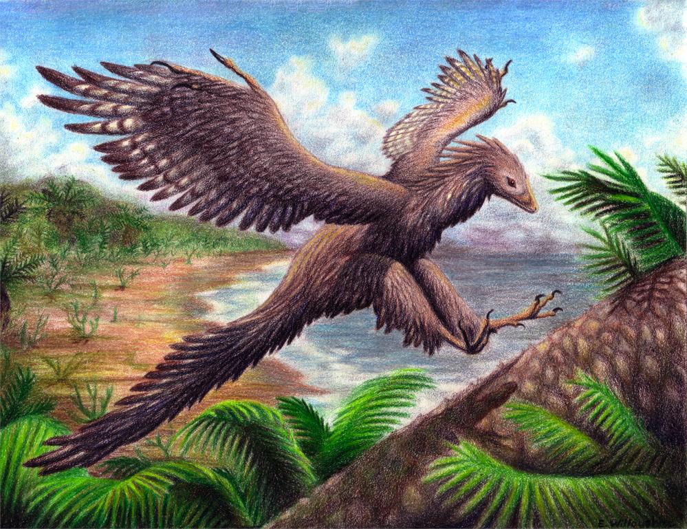 Gambar Dinosaurus  Dunia Binatang