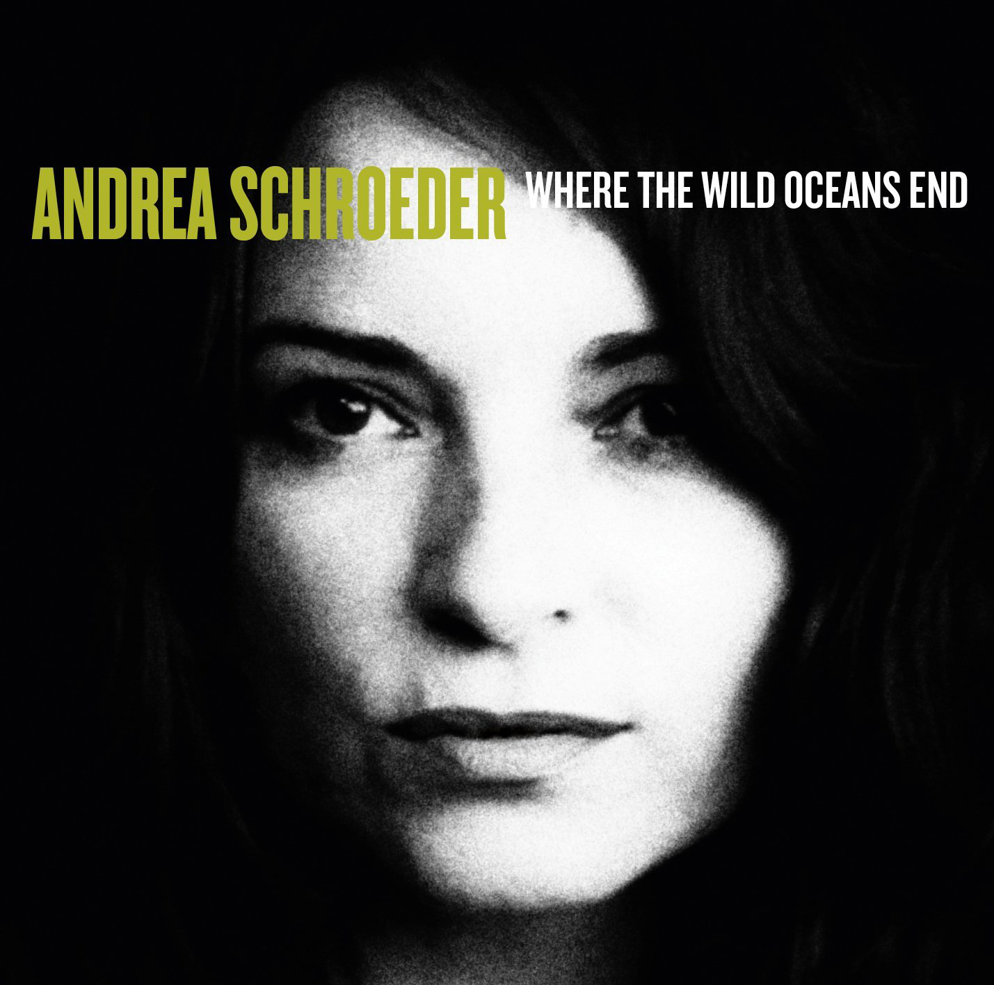 Andrea Schroeder - Where The Wild Oceans End