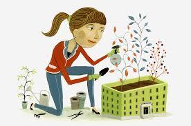 professional-blogging-earn-money