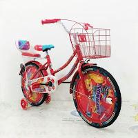 Sepeda Anak 18 Inci Emerson EM9903GX City Bike