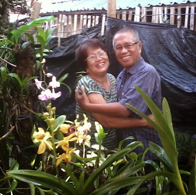 Hugging each other in an orchids garden - 1