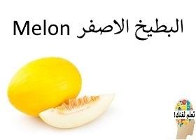 البطيخ الاصفر : Melon