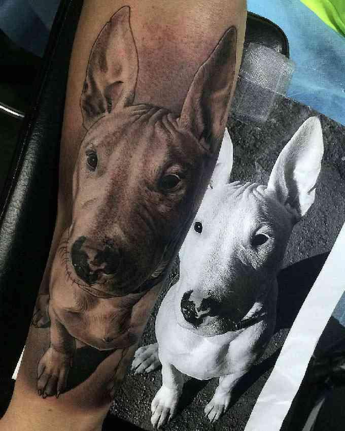 Vemos un tatuaje en blanco y negro de bull terrier