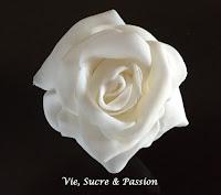 White Fondant Rose