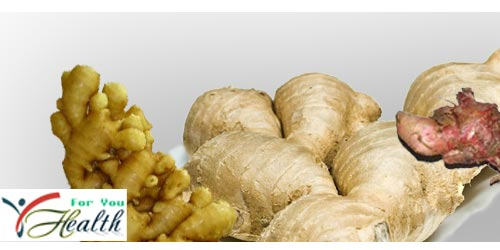 Ginger And Treatment For Health