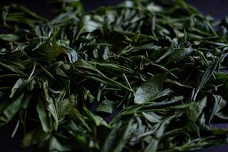 段々と乾燥する茶葉