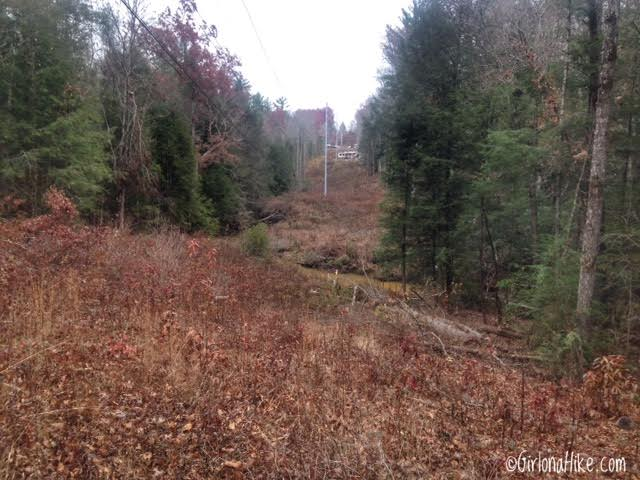 Hiking at Cumberland Mountain State Park, Tennessee