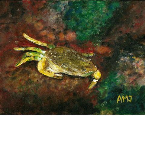 Crabby- Underwater painting