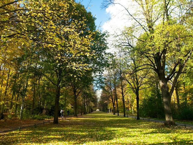 Senderos infinitos en Tiergarten