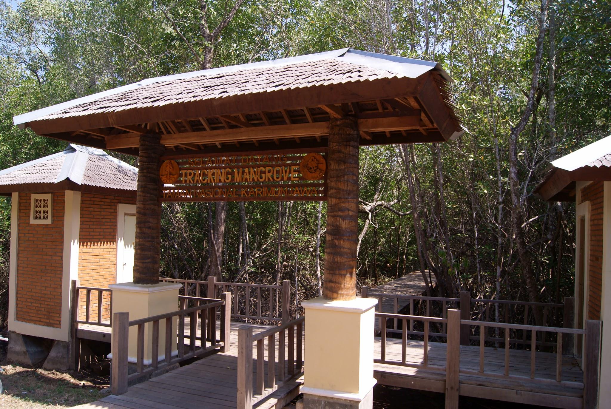 7 Destinasi yang Bisa Dikunjungi di Karimunjawa