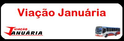 http://busologiamaua.blogspot.com.br/p/viacao-januaria.html