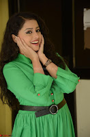 Geethanjali in Green Dress at Mixture Potlam Movie Pressmeet March 2017 073.JPG