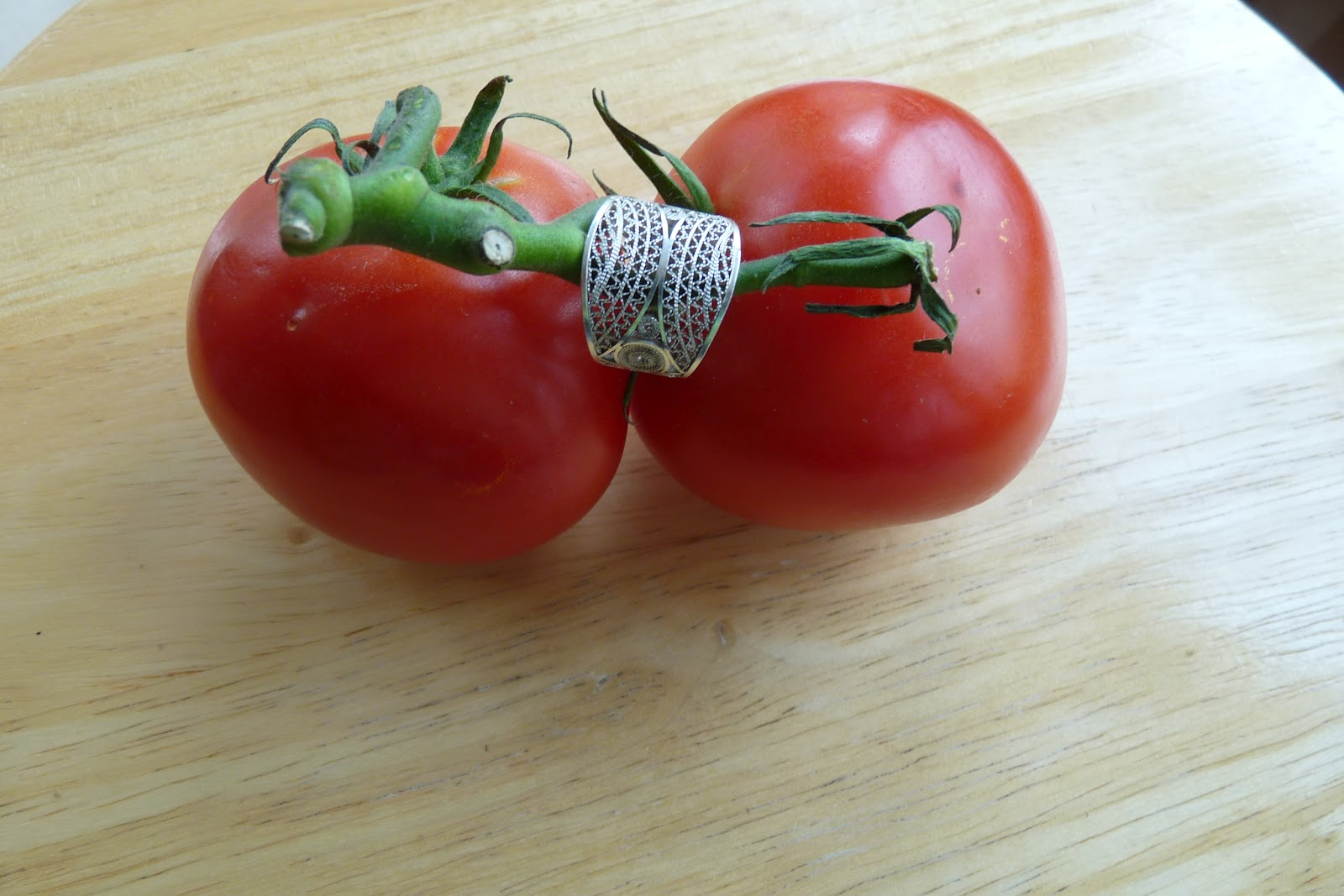 Ap Biology Summer Assignment Genetically Modified Organism