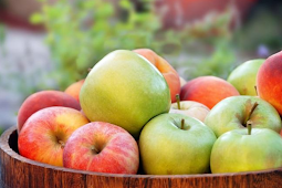 Manfaat Apel Untuk Kesehatan Tubuh Kita