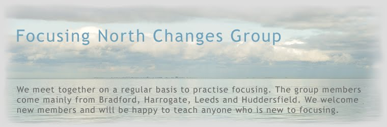 Focusing North Changes Group