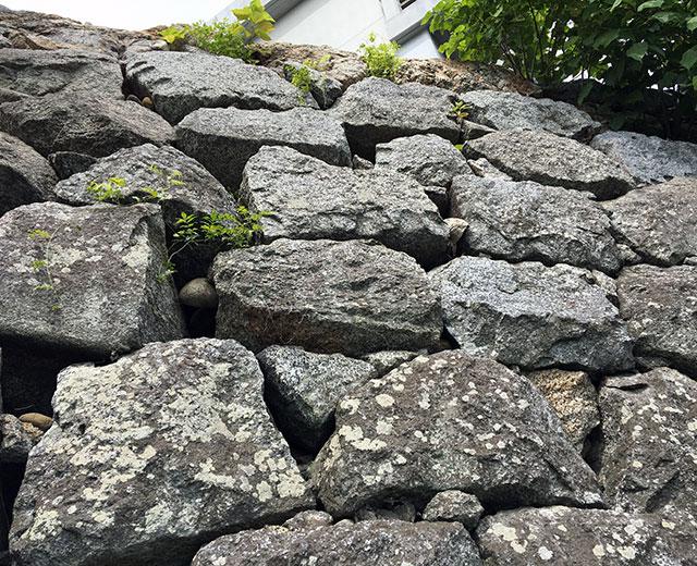 諏訪神社を支え現在は旧市民会館はまホールを支える西側石垣は浜松城と同じく浜名湖北岸産の石を野面積みで積み上げている(2017年6月26日撮影)