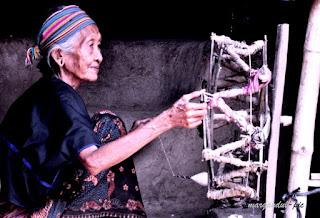 Nenek (istilah bahasa Sasaknya Papuk) yang masih kuat memintal benang untuk selanjutnya ditenun