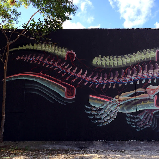 """""""Dissection Of An Alligator"""" New Street Art Mural by Nychos in Miami, USA. 4"""