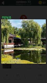 Среди домов и деревьев раскинулся красивый пруд с домиком на воде