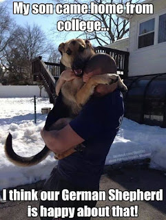 Dog Humor : Came home from College.. One Happy Dog