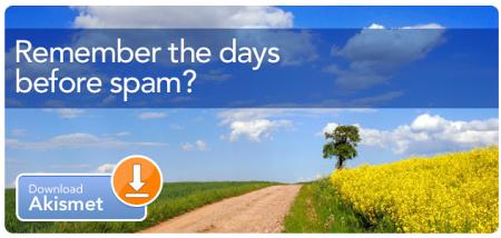 плагины для Wordpress против спама