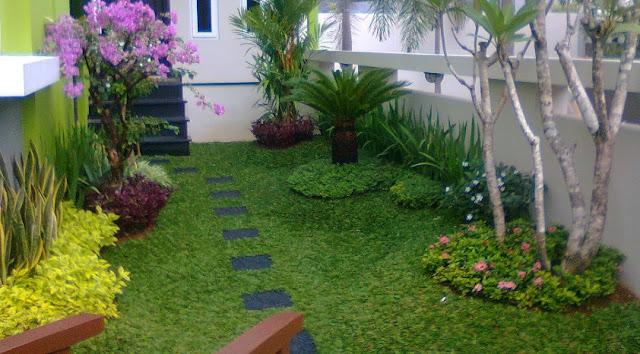 Taman Depan Rumah Minimalis Untuk Lahan Sempit Sederhana