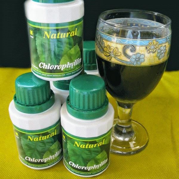 Natural Chlorophyllin...!!! Pemersih Racun Tubuh Alami