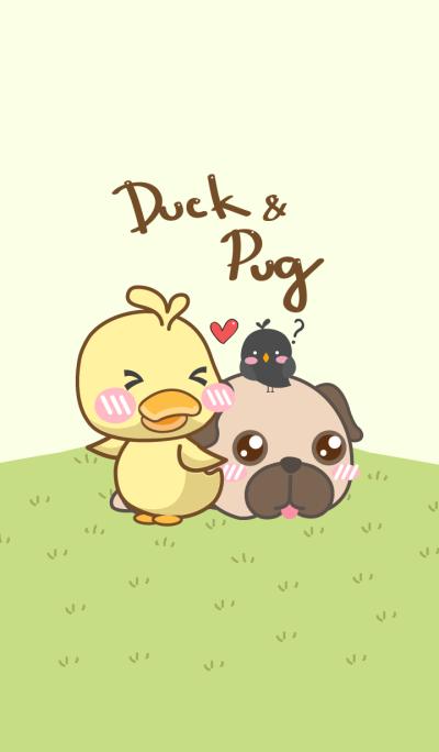 Duck & Pug