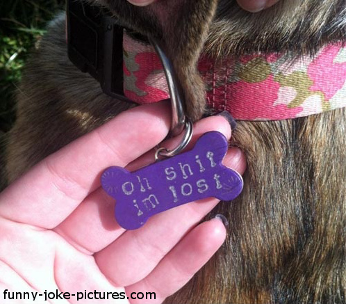 Funny Dog Tag Photo Image- Oh shit I'm lost