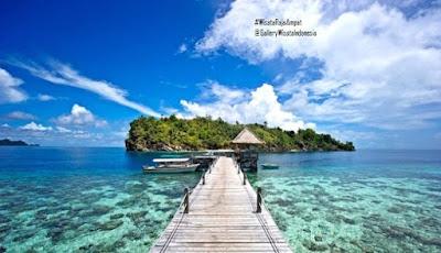 Raja Ampat Papua | Wisata Nusa Tenggara