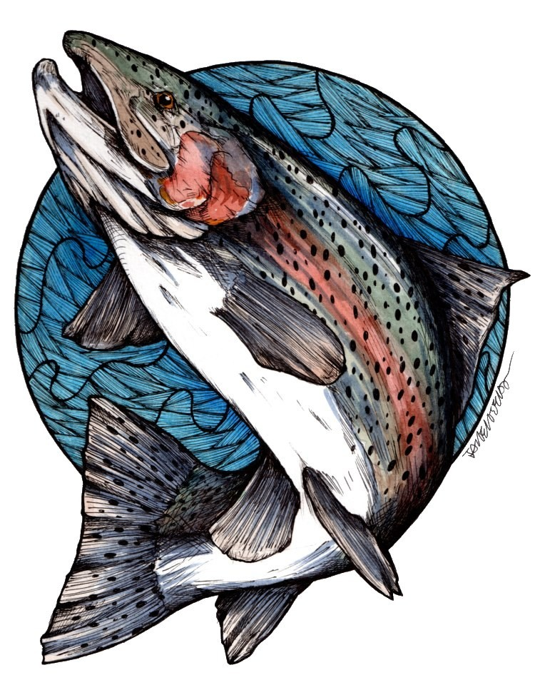 Trout Fish Clipart