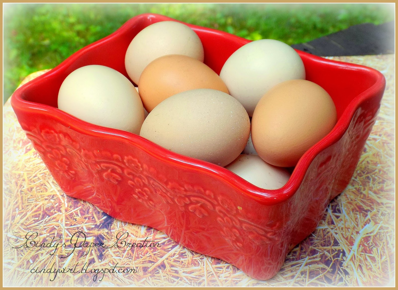 Fresh Free Range Eggs by cindywirl.blogspot.com