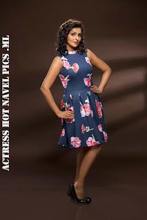 Remya Nambeesan Hot