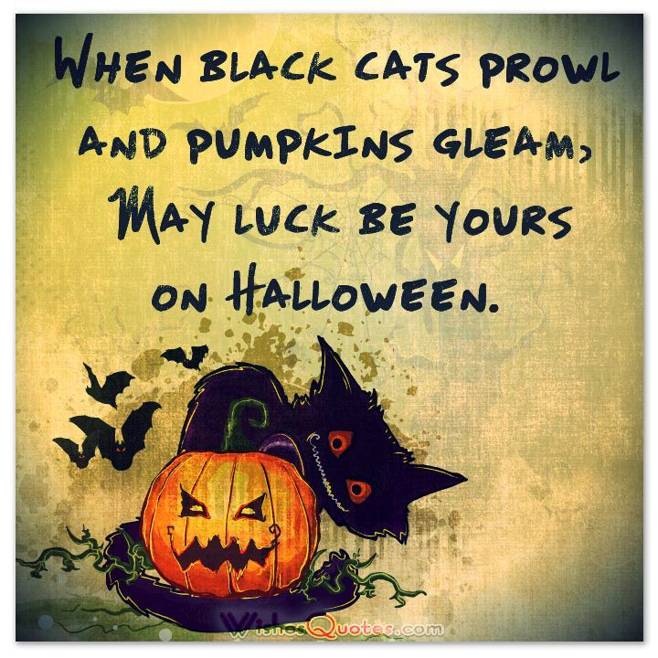Shadows Of A Thousand Years Rise Again Unseen, Voices Whisper In The Trees,  Tonight Is Halloween!