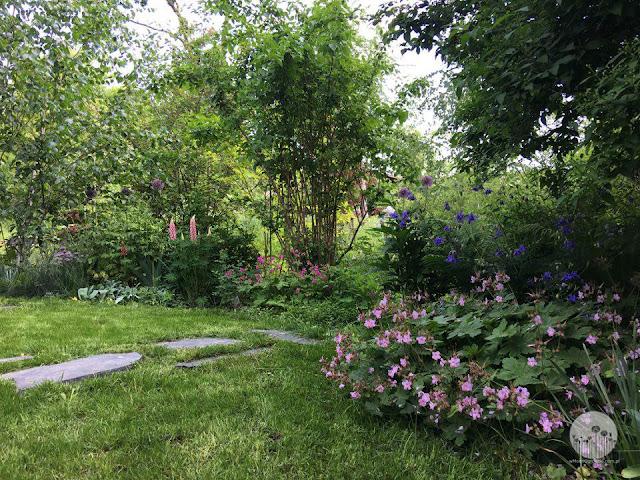 ogrod_naturalistyczny jak urzadzic