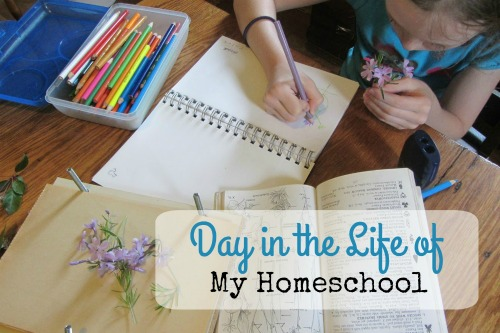 A Day in the life of My Homeschool