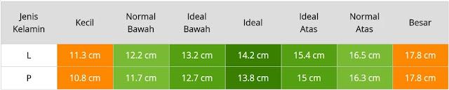 cm dan untuk tinggi bayi wanita yaitu  Berat Badan & Tinggi Bayi Usia Enam Bulan Laki-Laki & Perempuan