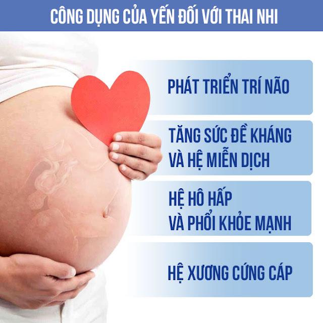 Công dụng của yến với thai nhi