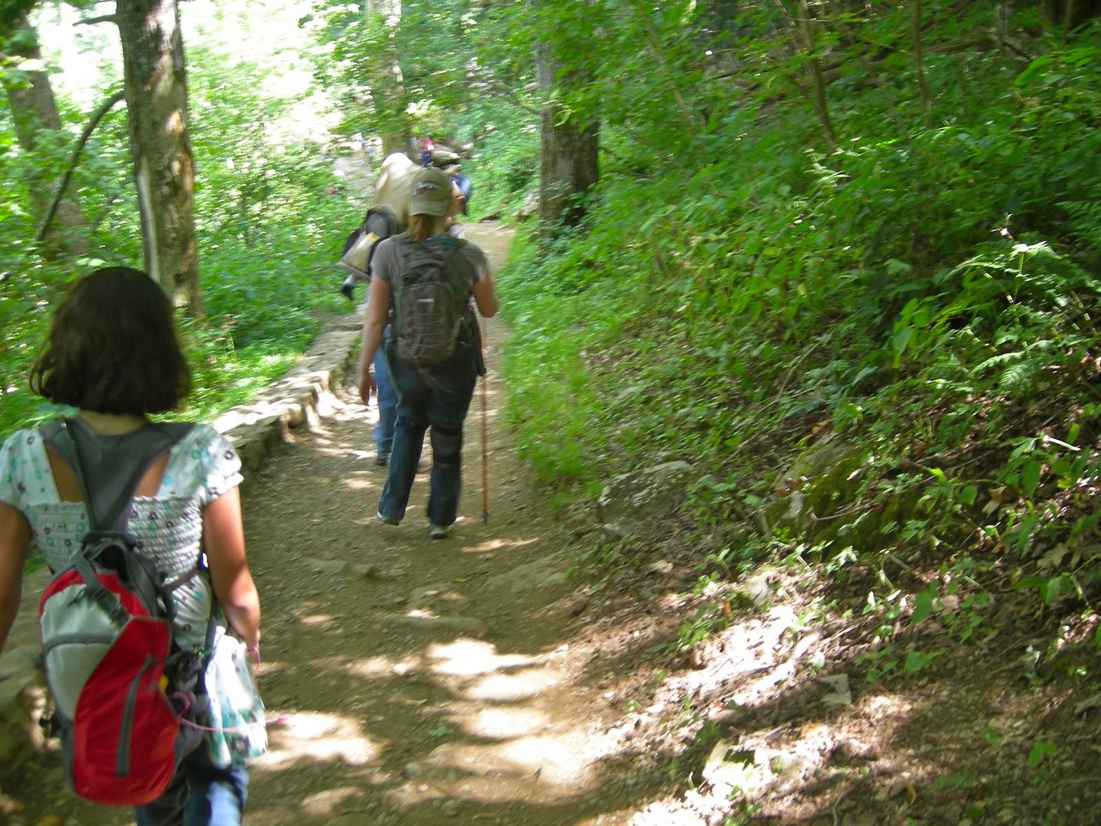 Dark Hollow Falls Hiking Trail - Skyline Drive, VA