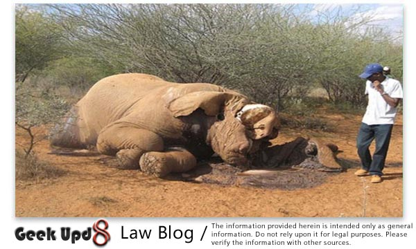 The Elephants Preservation Act, 1879 : Online Bare Acts Collection