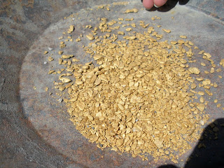 Gold nuggets an the end of the day!!