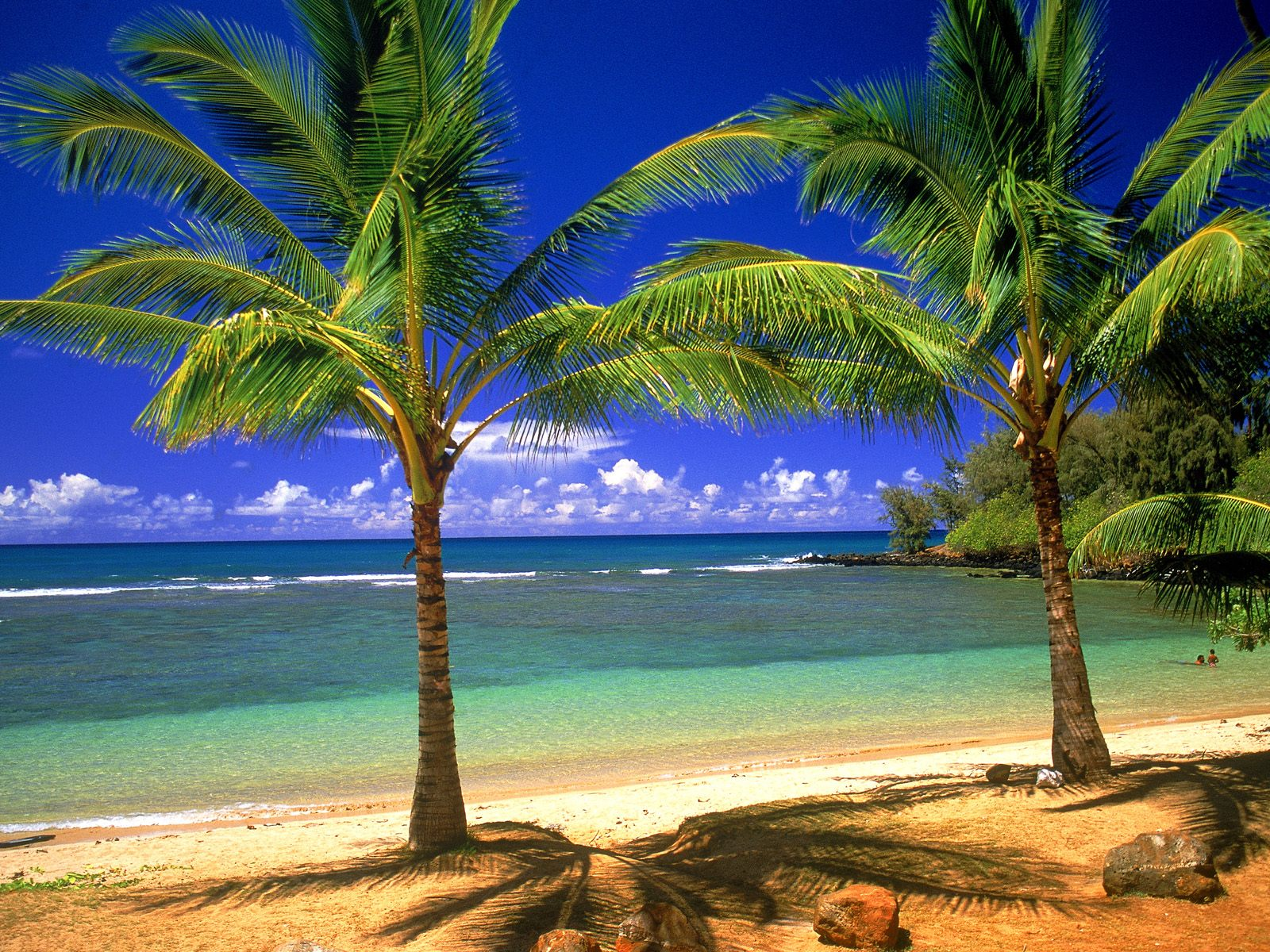 Hd Tropical Island Beach Paradise Wallpapers And Backgrounds: The Rinsou Wallpapers: Wallpaper Desktop