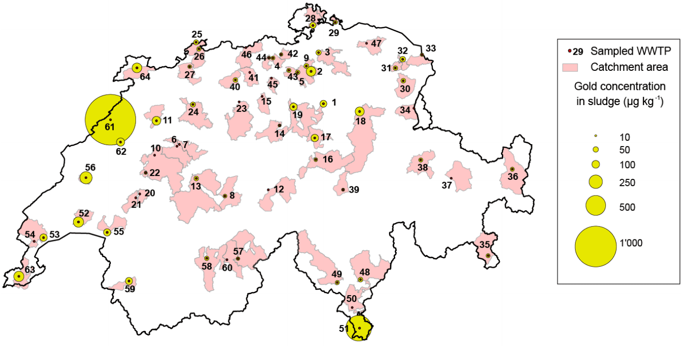 Gold concentration in Swiss sludge