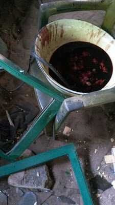 5 Human Skulls, Basin of Blood Found In Imo Church