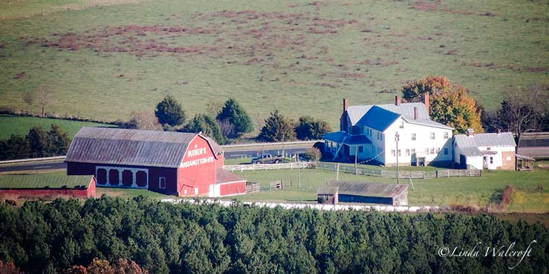 view with farm