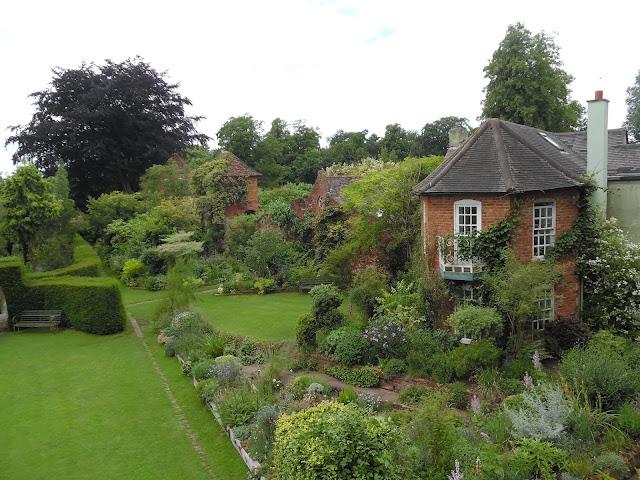 widok ogrodu z góry, pnącza w ogrodzie